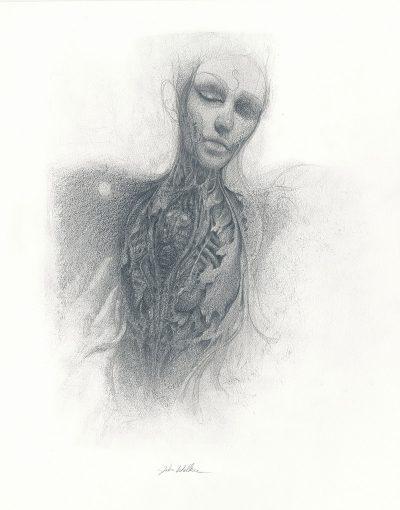 John Walker - Torso Drawing 1