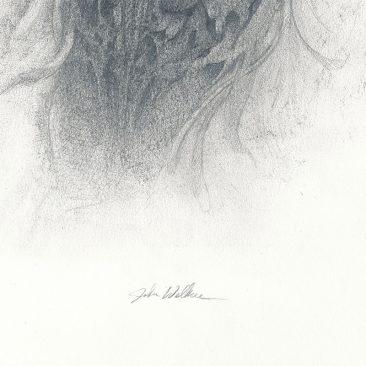 John Walker - Torso Drawing 1 (Detail 2)