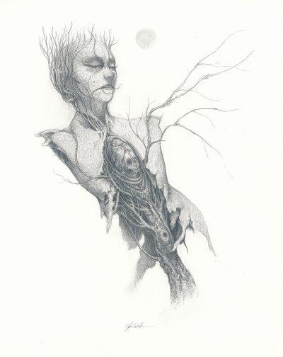 John Walker - Torso Drawing 2