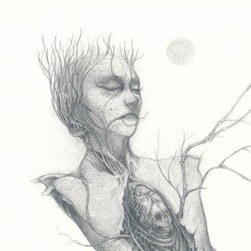 John Walker - Torso Drawing 2 (Detail 1)