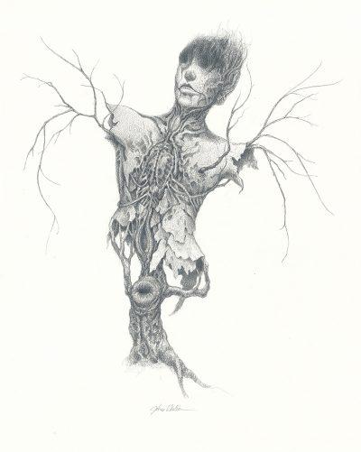 John Walker - Torso Drawing 3