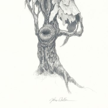 John Walker - Torso Drawing 3 (Detail 2)