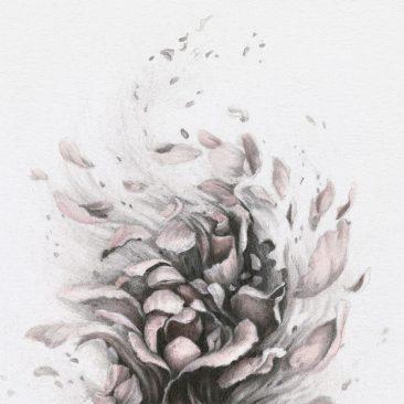 Christina Mrozik - A Breath of Pink (Detail 1)