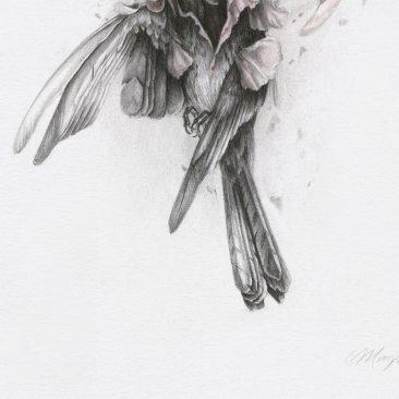 Christina Mrozik - A Breath of Pink (Detail 2)