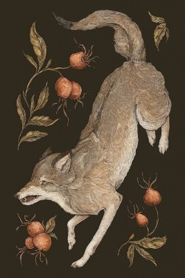 Jessica Roux - The Wolf and Rose Hip