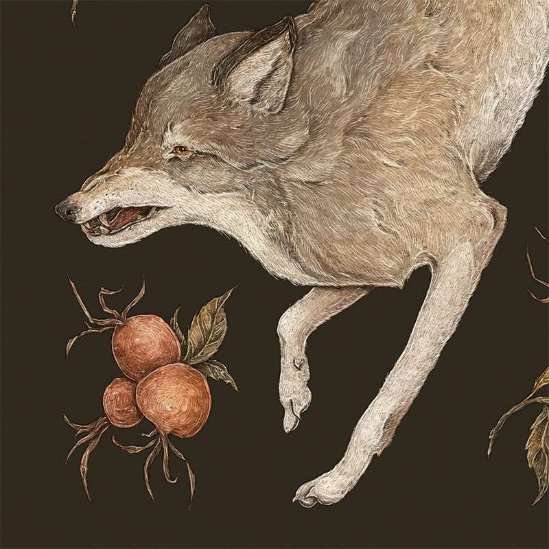Jessica Roux - The Wolf and Rose Hip (Detail 2)