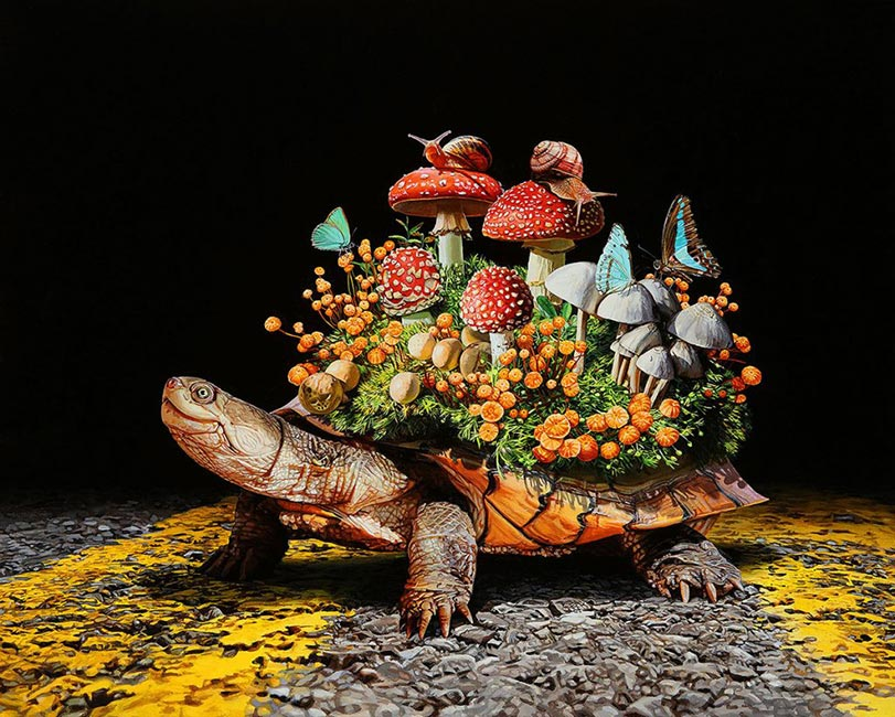 Lisa Ericson – Collective Frontiers – Artist Profile