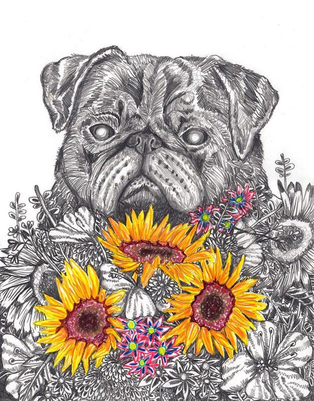 John Casey - Wild Pug
