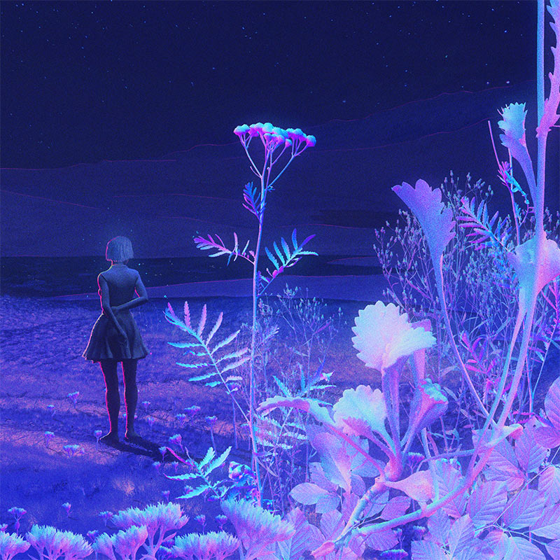 Xsullo - Nocturnal Bloom (Detail 2)