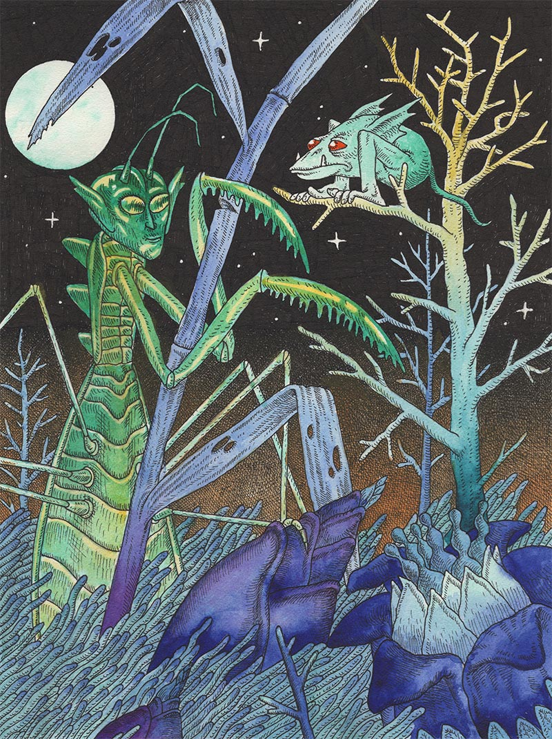 Davor Gromilovic - Bad Camouflage