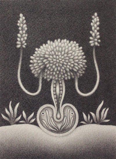 Catriona Secker - Micro Dweller, Male