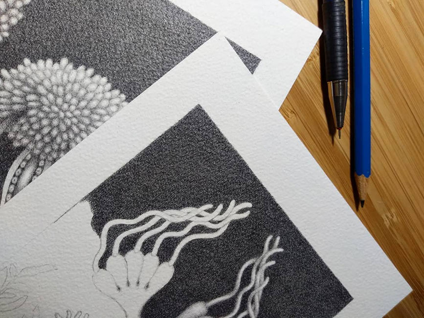 Catriona Secker - MicroVisions 2 - WIP