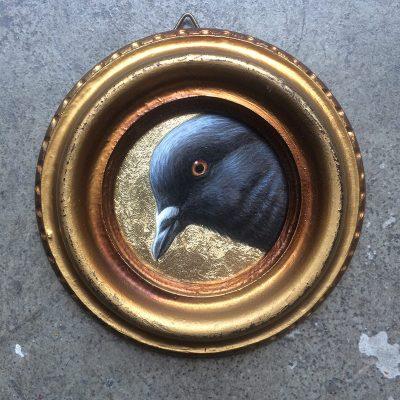 Jean Labourdette - Perplexed Pigeon