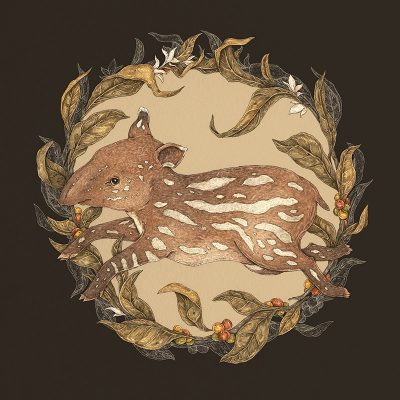 Jessica Roux - Living Fossil