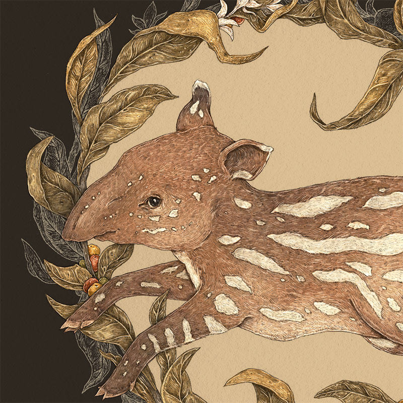 Jessica Roux - Living Fossil (Detail)