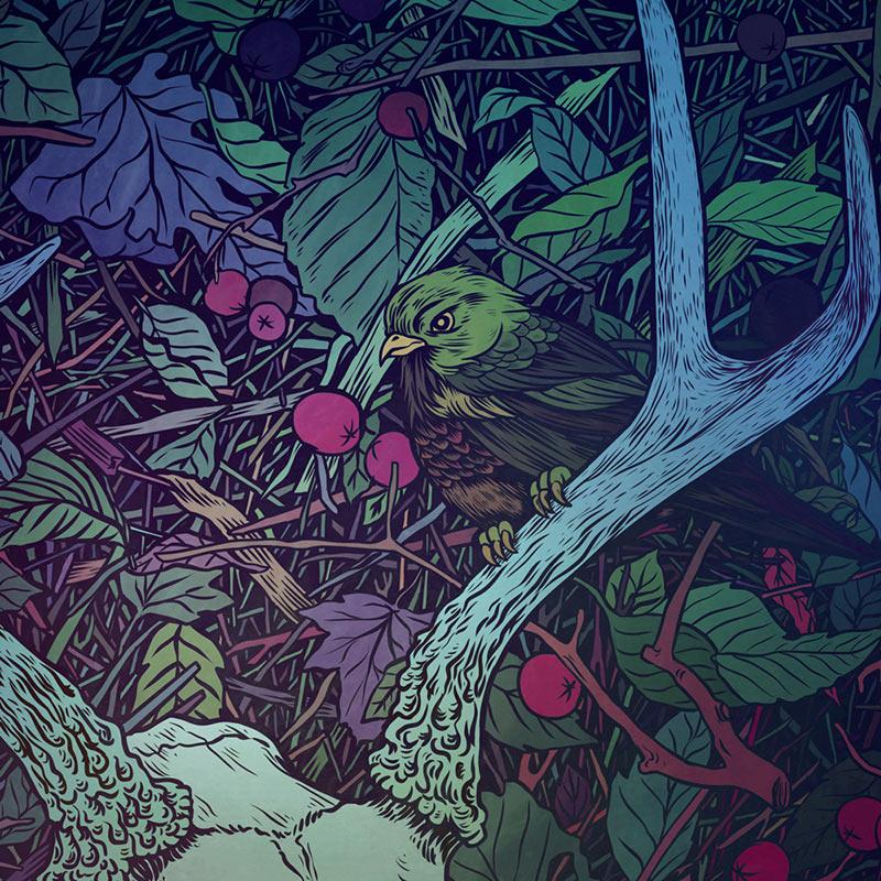Anna Ezer - Antlers (Detail 2)