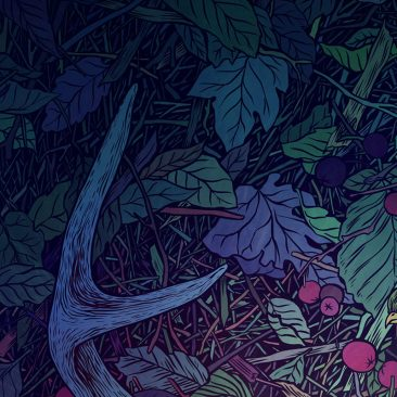 Anna Ezer - Antlers (Detail 4)