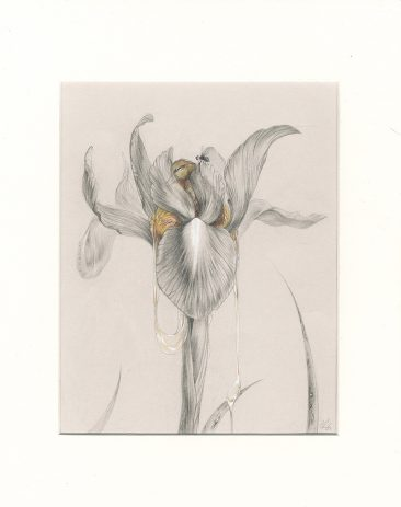 Corinne Reid - Anthesis (White Background)