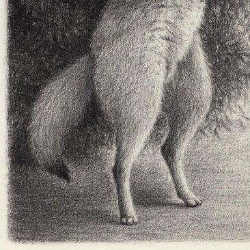 David Alvarez - Sheep (Detail 2)