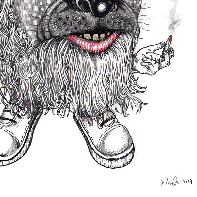 John Casey - Dog Wizard (Detail 2)