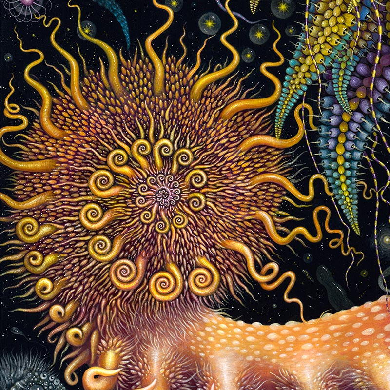 Robert Steven Connett - DEVOURING STARJELLY (Detail 2)