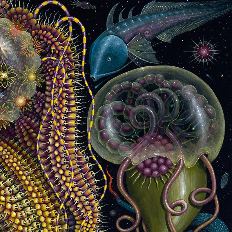 Robert Steven Connett - DEVOURING STARJELLY (Detail 3)