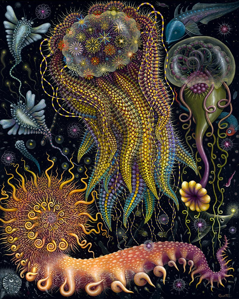 Robert Steven Connett - DEVOURING STARJELLY