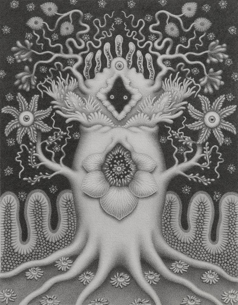 Catriona Secker - Nature Spirit