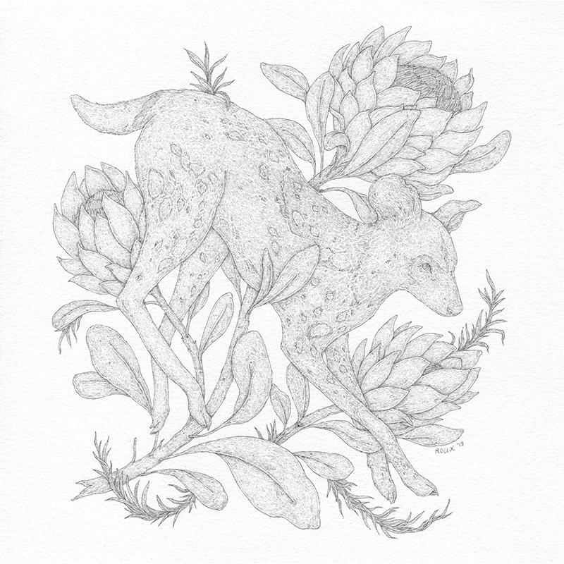 Jessica Roux - African Wild Dog