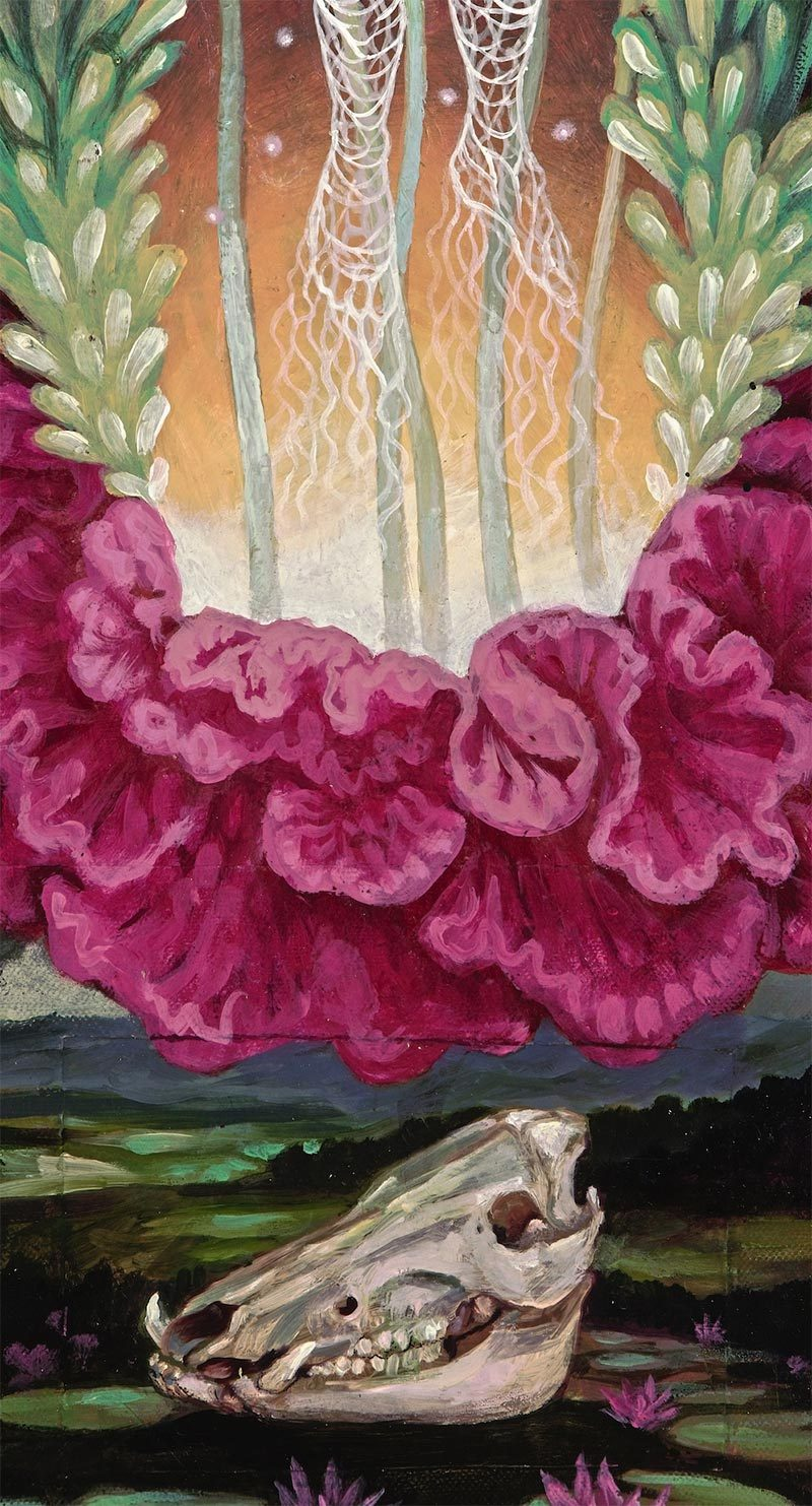 Ila Rose - In Bloom (Detail 2)