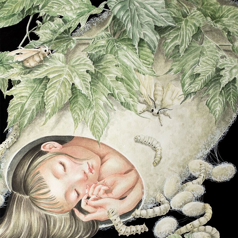 Phuong Nguyen - A Moth's Dream (Detail 1)