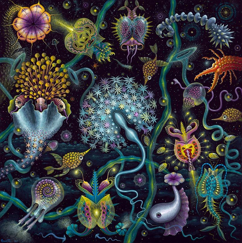 Robert Steven Connett - SPACE PLANKTON