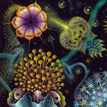 Robert Steven Connett - SPACE PLANKTON (Detail 1)