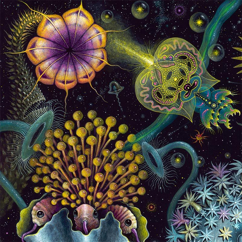 Robert Steven Connett - SPACE PLANKTON (Detail 1)