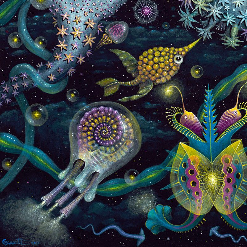 Robert Steven Connett - SPACE PLANKTON (Detail 2)