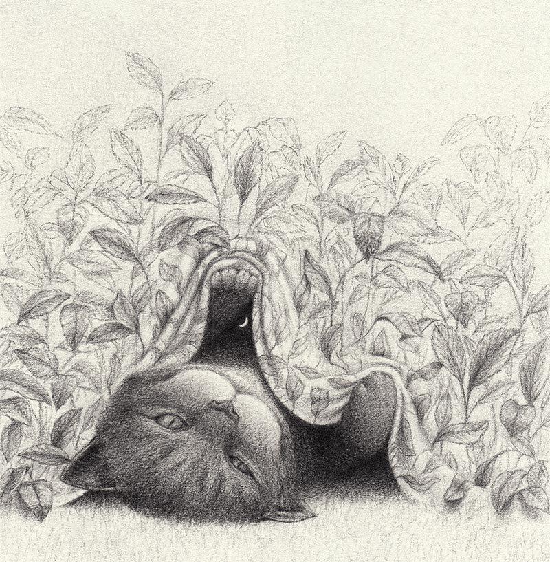 David Alvarez - Cheshire Cat