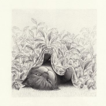 David Alvarez - Cheshire Cat (Border)