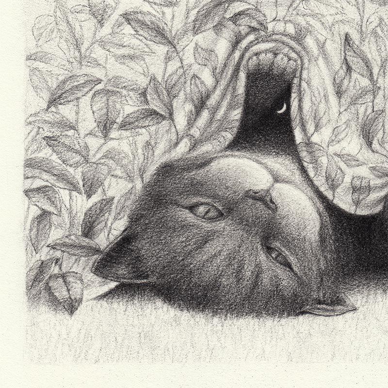 David Alvarez - Cheshire Cat (Detail 1)