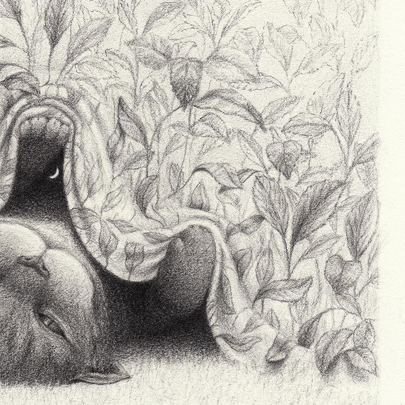 David Alvarez - Cheshire Cat (Detail 2)