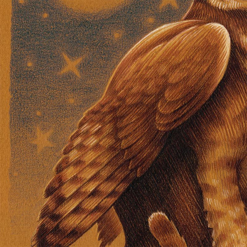 Brian Britigan - Lesser Griffin (Detail 2)