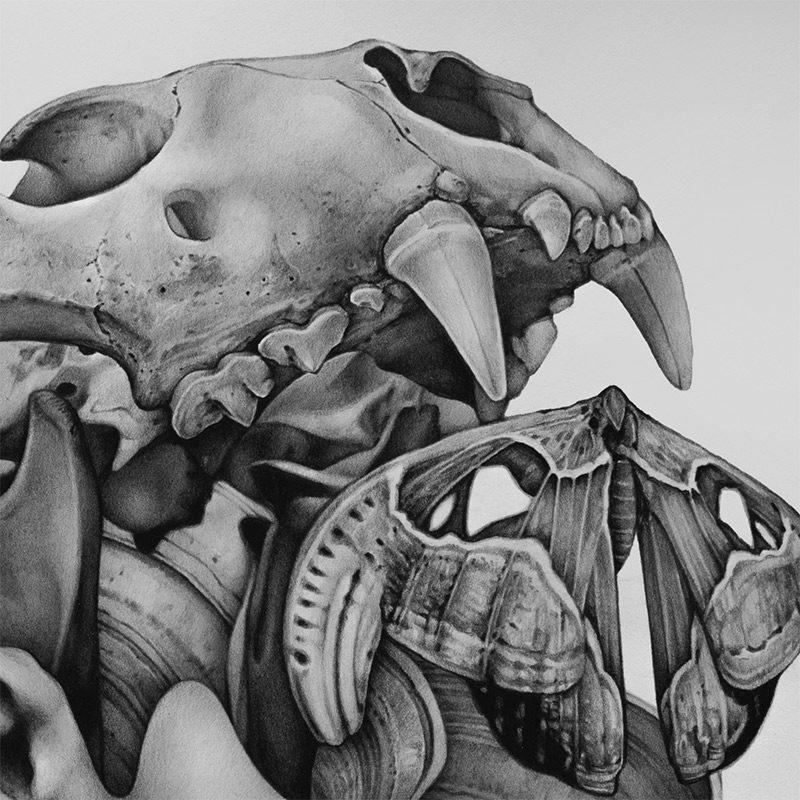 Collin Elder - Amnesia (Detail 1)