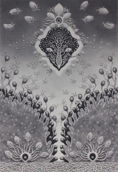 Catriona Secker - Nature Spirit 2