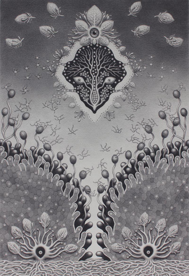 Catriona Secker - Nature Spirit 2