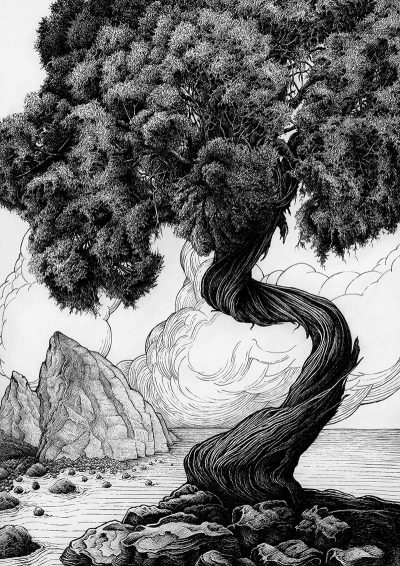 Karl Trewhela - Juniper 2 - Tree 4