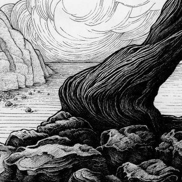 Karl Trewhela - Juniper 2 - Tree 4 (Detail 3)