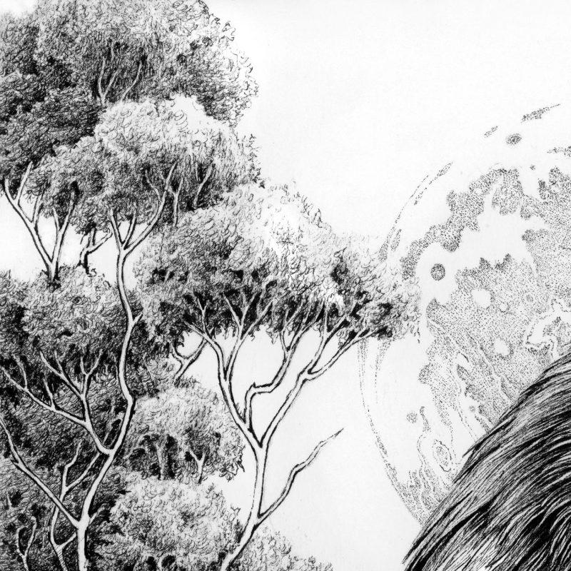 Karl Trewhela - Memento Mori (Detail 1)