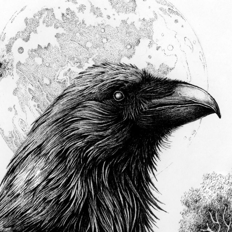 Karl Trewhela - Memento Mori (Detail 2)