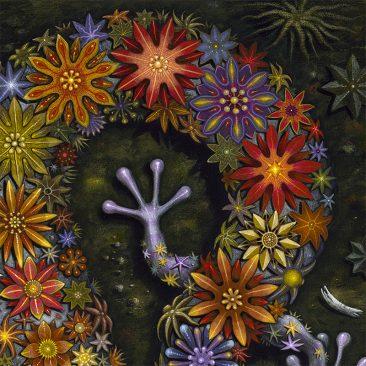 Robert Steven Connett - Starry Diplocalus (Detail 1)