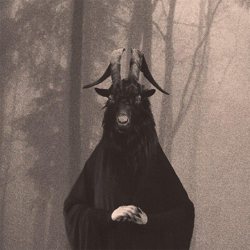 Esther Limones - Untitled - Series Leviatan (Detail 1)
