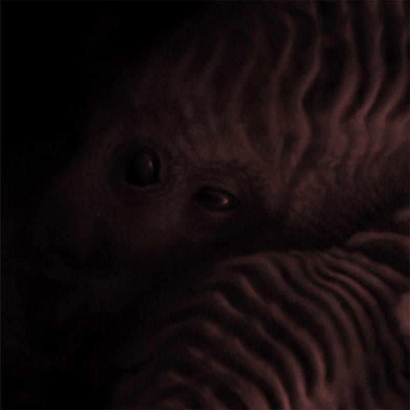Jason Stewart - Discarnate (Detail 1)